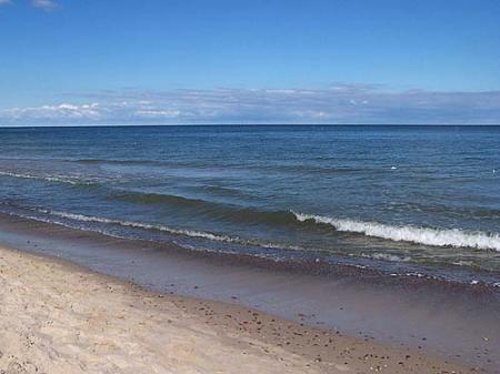 Ekosystem Morza Bałtyckiego i OCEANA