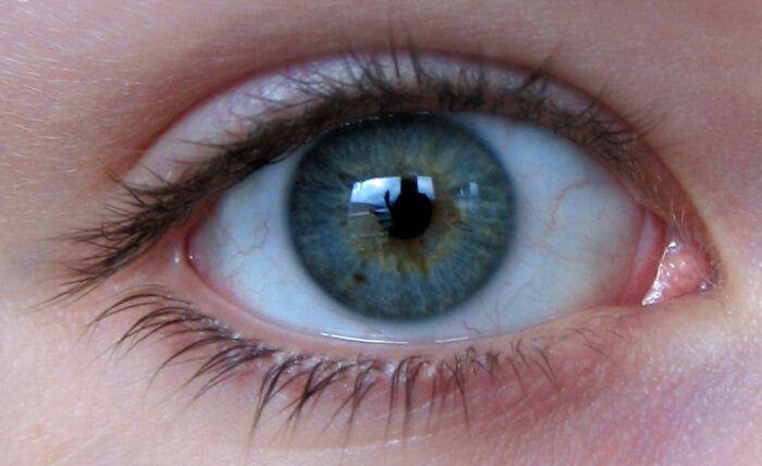 Polacy opracowali wynalazek umożliwiający diagnozę na podstawie tęczówki oka